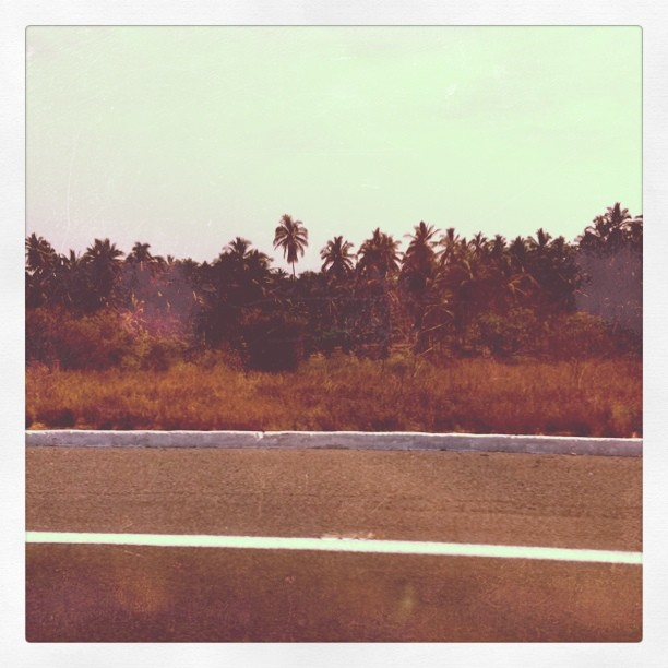 image from Getting closer to the beach